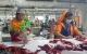 Bangladesh Leather Goods Exporter factory photos